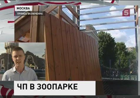 Краснодарского края новости онлайн