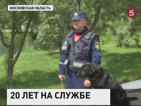 20 лет кинологической службе МЧС России