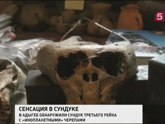 В Адыгее краевед обнаружил странного вида черепа