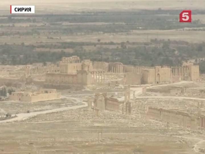Сирийские правительственные войска вошли вПальмиру