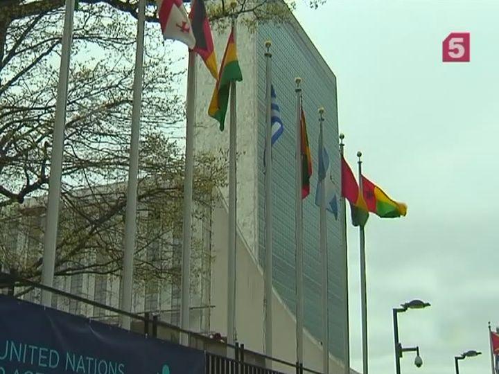 РФиКНР предложили Совбезу ООН проект резолюции против химоружия вСирии иИраке