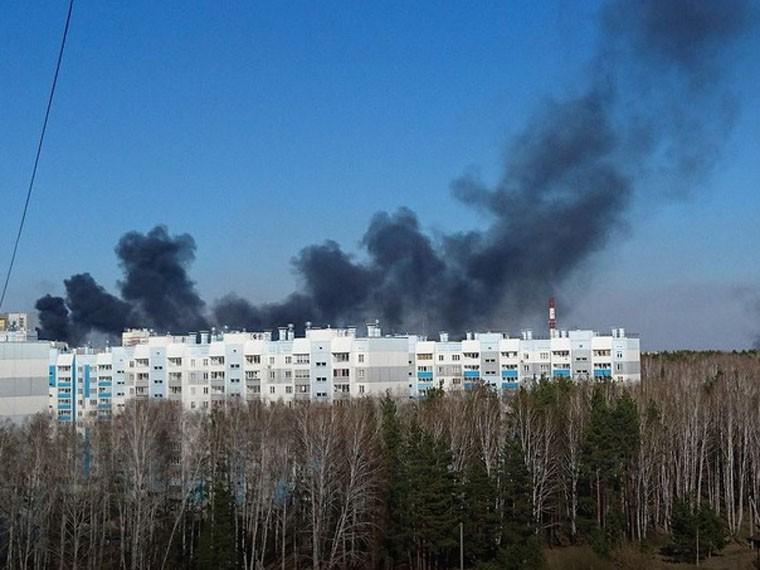 ВЧелябинске полыхает сильный лесной пожар ВИДЕО