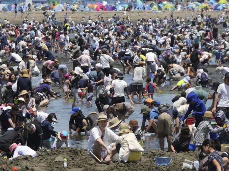 Уикэнд по-японски: жители Иокогамы собирают моллюсков-песчанок