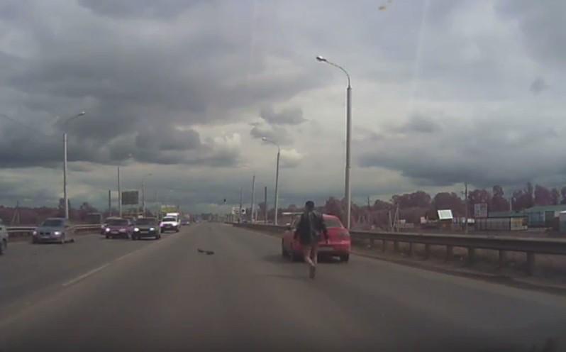 Водитель помог перейти дорогу утятам