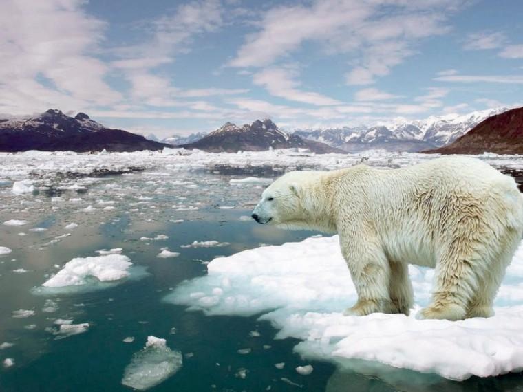 Выход США изПарижского соглашения «согреет» Землю на0,3 градуса кXXIIвеку