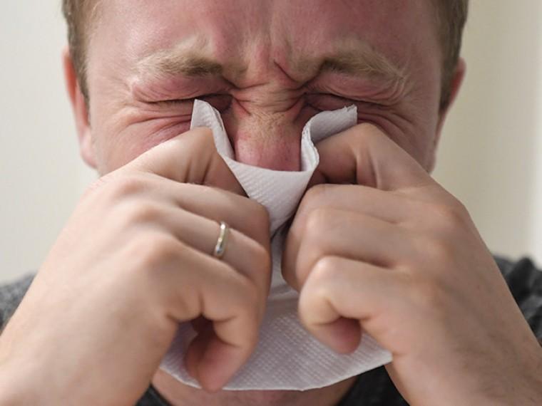 прививка от аллергии на собаку аудиокнига