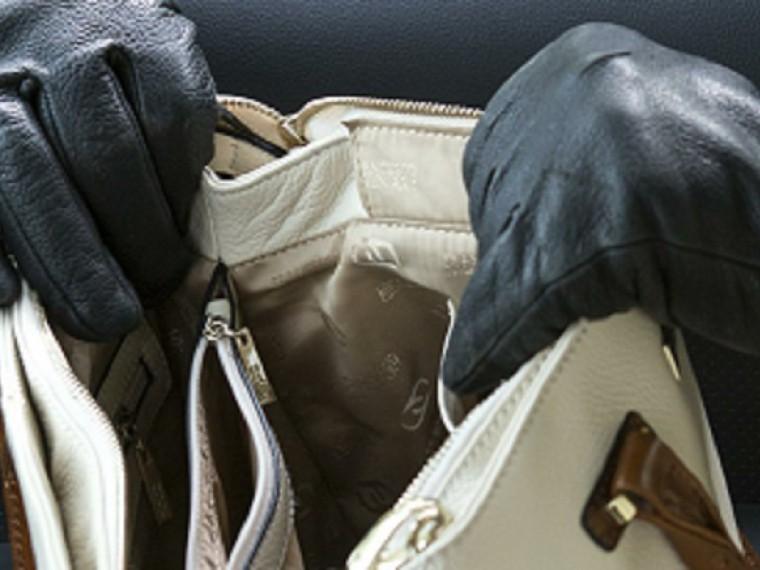 Ворон илисица: ВКалужской области дама соблазнила прохожего истащила его мобильник