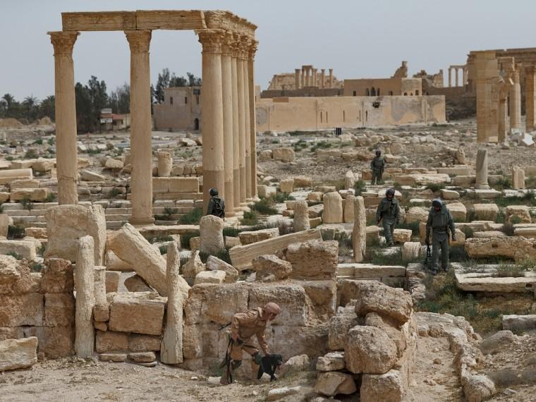 ВСирии убилисемерых человек изорганизации «Белые каски»