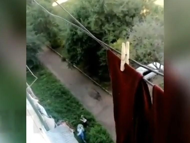 ВПриморье соседи спасли ребенка, выпавшего изокна5-этажки