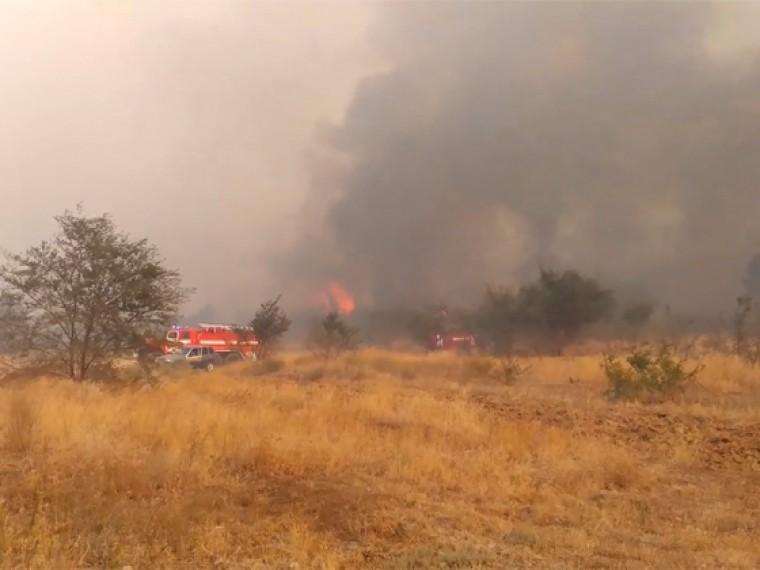 Степной пожар вВолгоградской области тушили почти 30 часов