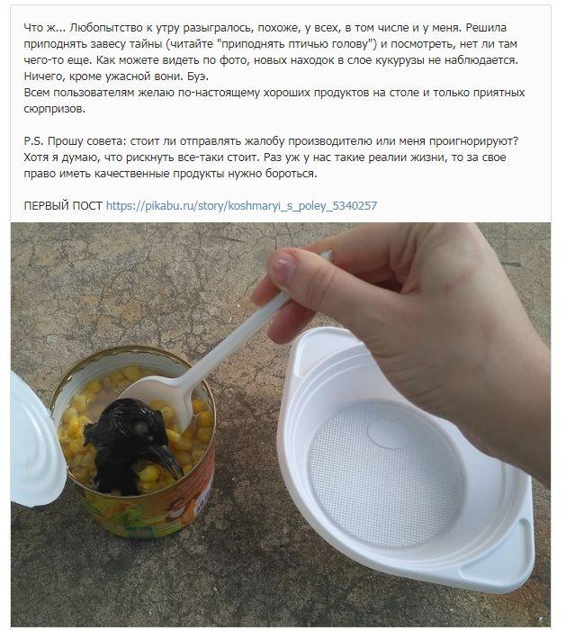 Консервированная кукуруза сголовой голубя попалась студентке вБелгороде