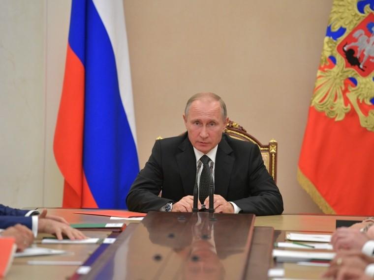 Владимир Путин отметил важность увеличения численности амурских тигров