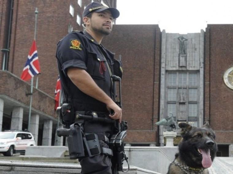 Полиция Норвегии задержала беженцев изСирии