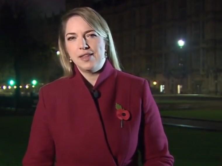 Громкие женские стоны чуть несорвали прямой эфир BBC