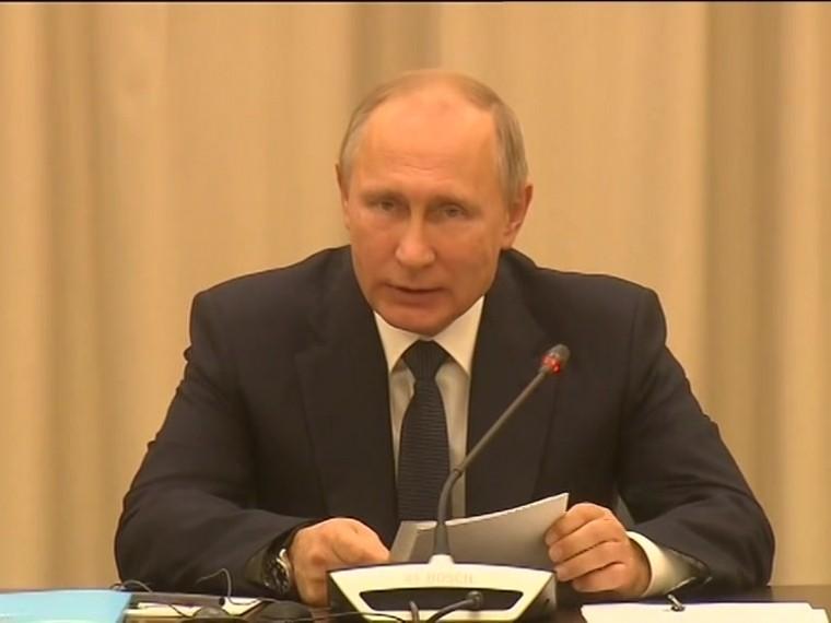 Путин встретился спопечительским советом Мариинского театра