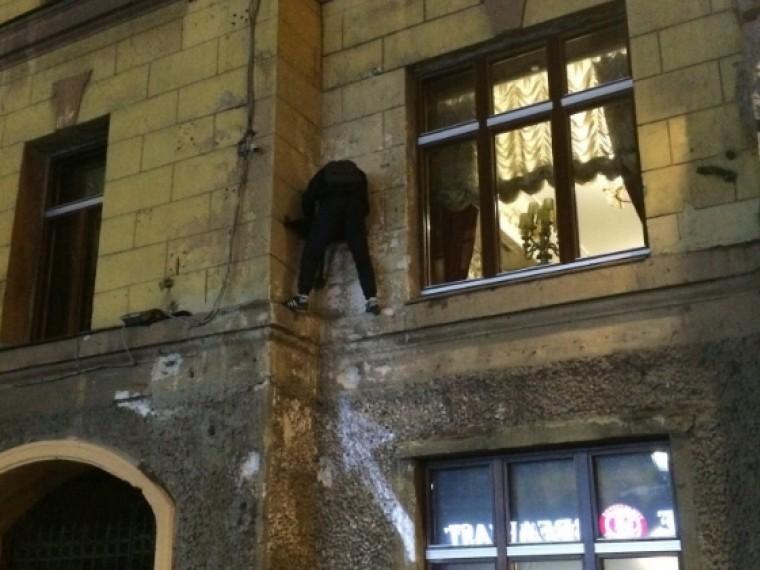 центре петербурга ограбили кота елисея