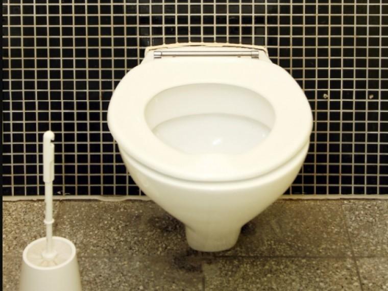 Прокуратура завершила проверку впетербургской школе, где детей заставляли драить туалет