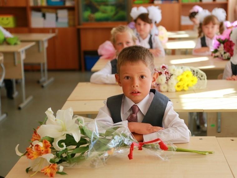 Петербургский УФАС предупредил сразу четыре районные администрации