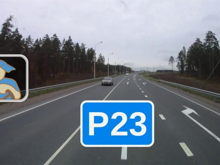 Федеральные автотрассы России спервого января изменят свою кодировку