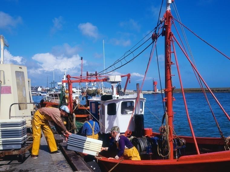 дмитрий рыбаков магазин