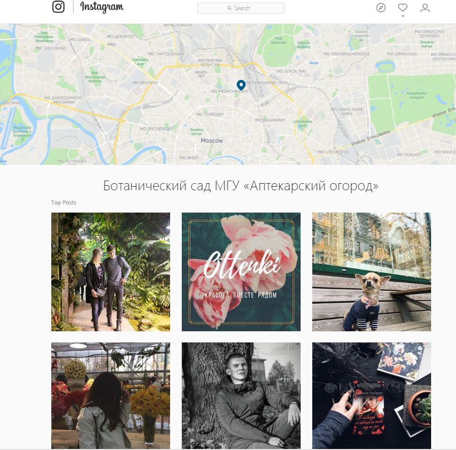 «Вопиющий беспредел»: социальная сеть Instagram заблокировал страничку Ботанического сада МГУ