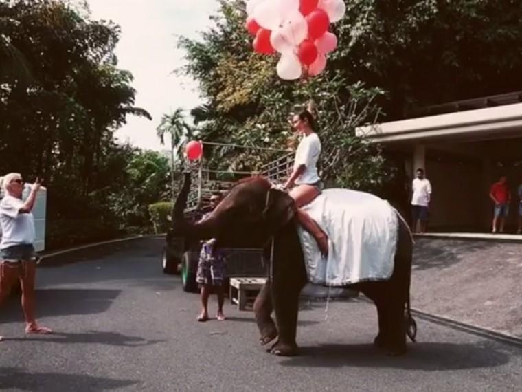 Видео: Всвойдень рождения Ольга Бузова вприступе эйфории поработила слона