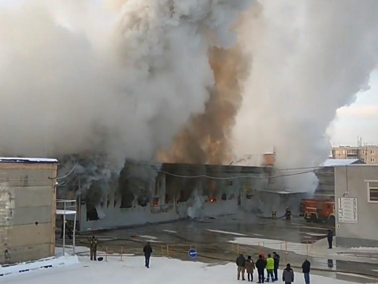 Пятый канал публикует первые кадры пожара вподмосковной деревне Молзино