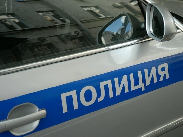 полицейский сбил пенсионерку собачьей упряжке москве