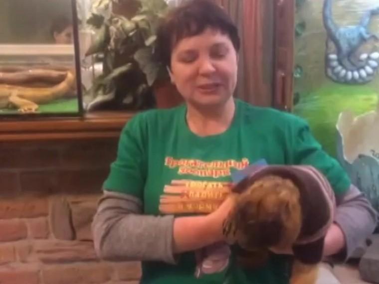 видео пророк ростовского зоопарка сурок бабася предсказал теплую