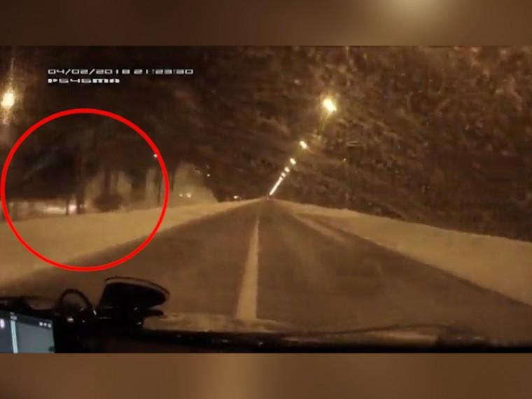 «Встреча» Jeep сдеревом вПетербурге попала накамеру видеорегистратора