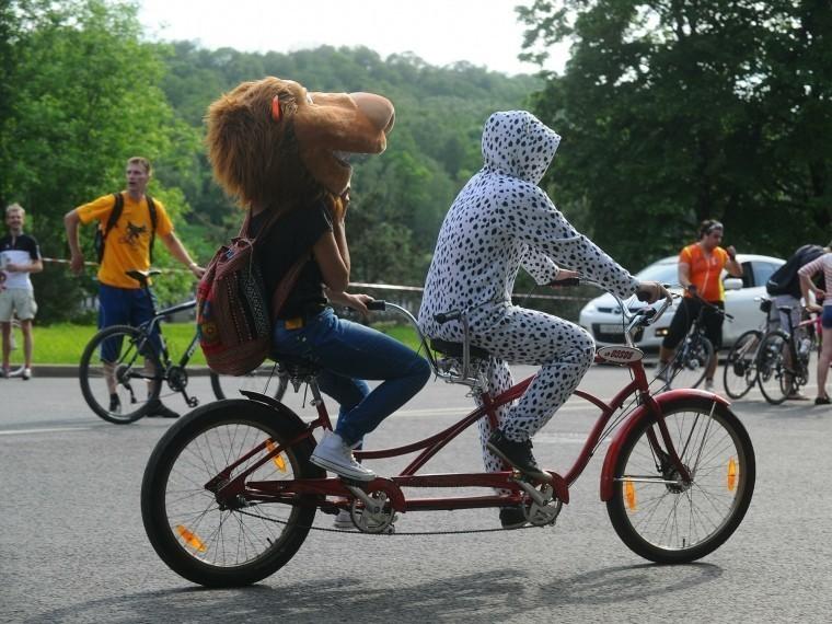 велосезон петербурге откроют массового велопробега