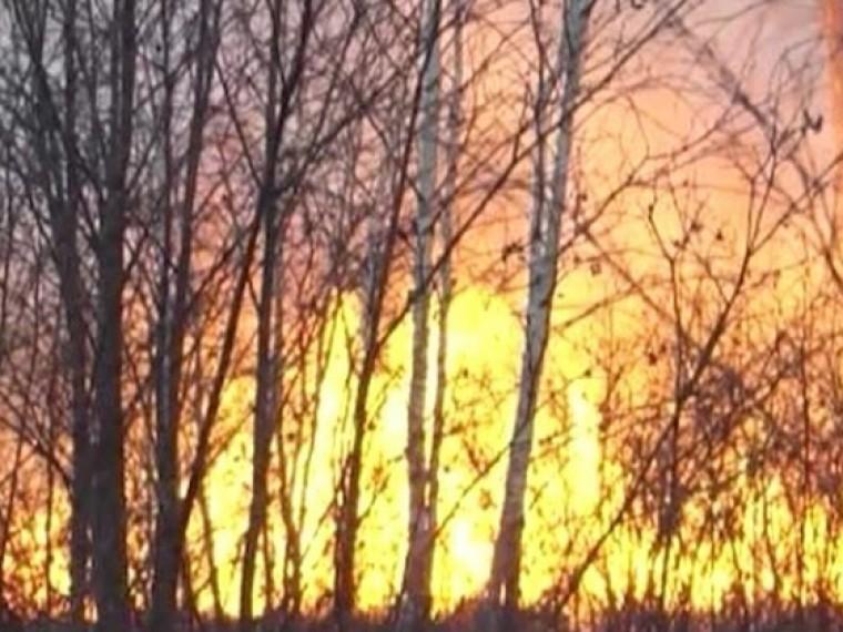 ВЧелябинской области измасштабных природных пожаров введен режим ЧС