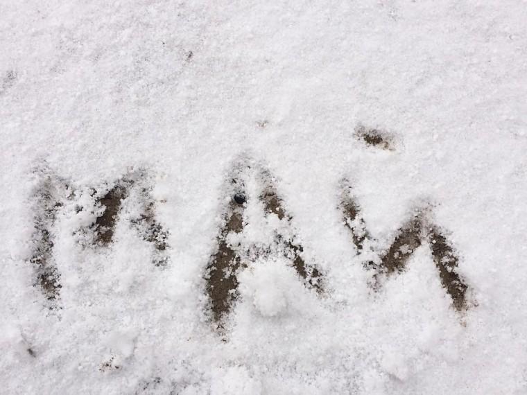 «Чучело Масленицы выжило имстит»— Югру завалило майским снегом