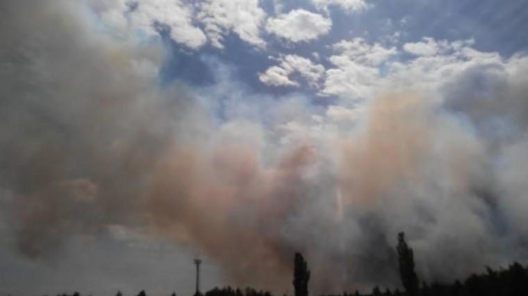 названа предварительная причина пожара чернобыльской зоне отчуждения