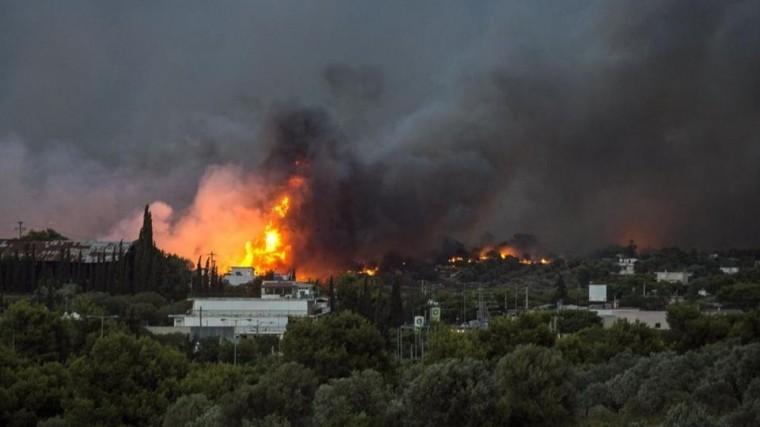 Пострадавшей отстрашных пожаров Греции помогают совсего мира