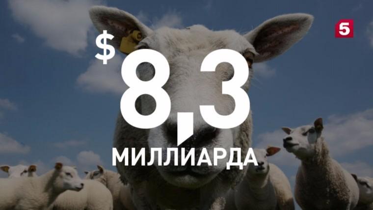 Таможня подсчитала потеризарубежных стран отроссийского продуктового эмбарго