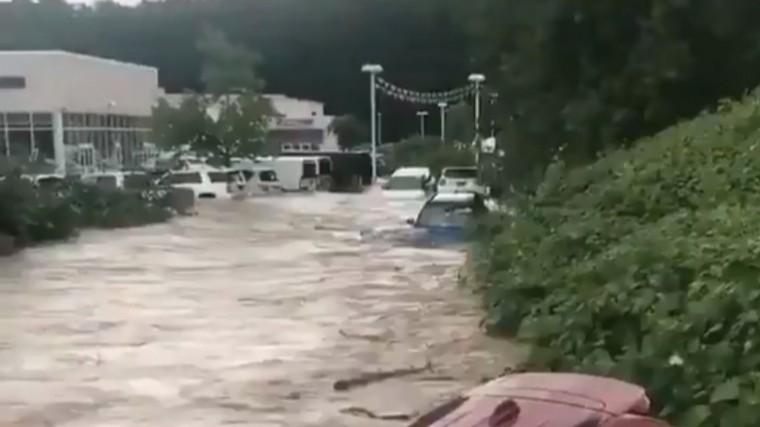 ВСША очевидцы сняли спасение невесты иззатонувшего автомобиля