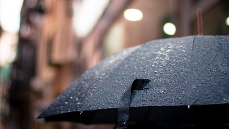 Петербург ждет холодная идождливая погода