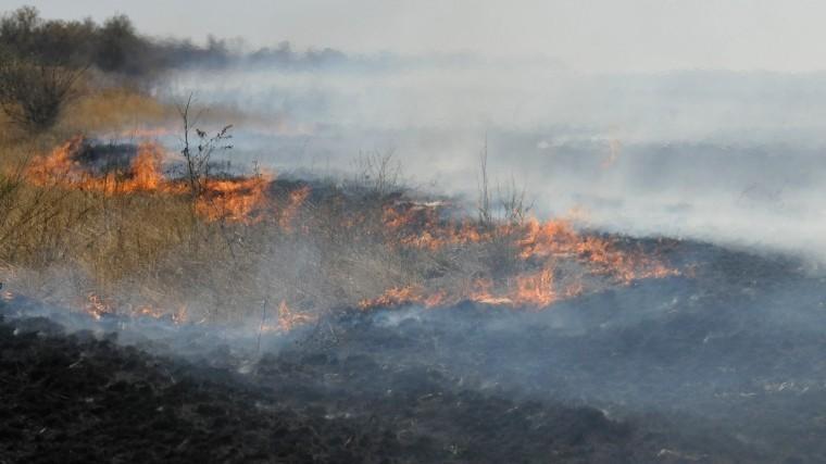 степной пожар уничтожить целый поселок оренбургской области
