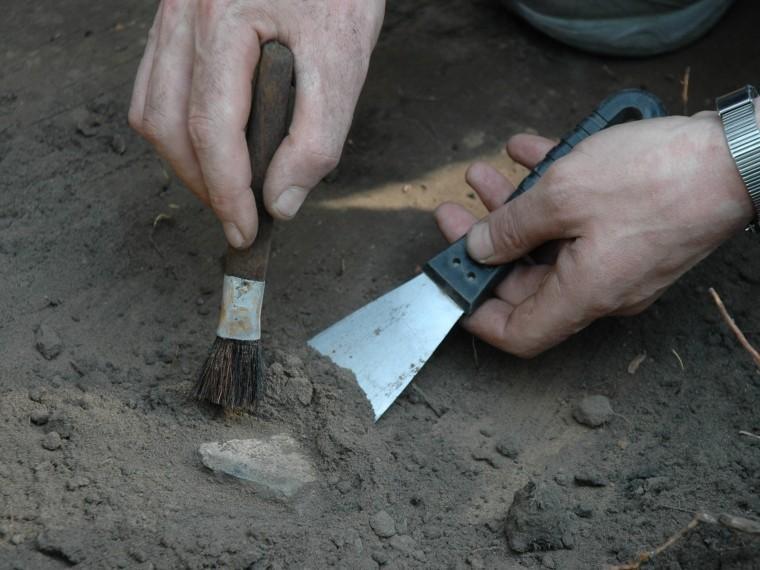 ВАфрике нашли древнейшие следы ДНК Homo sapiens