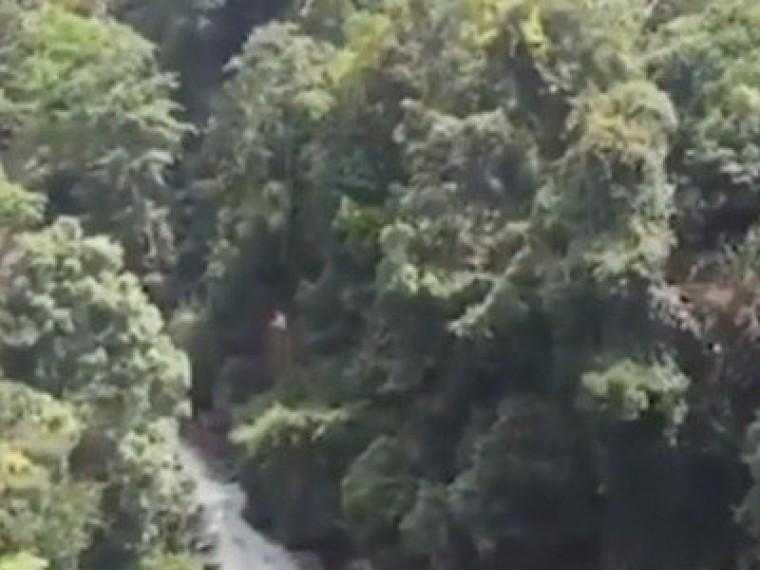 ВМалайзии разразился скандал из-за видео, накотором отец смаленькой дочкой прыгают старзанки