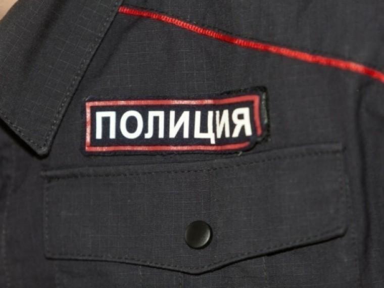 Вгородах проведения ЧМ-2018 появится туристическая полиция
